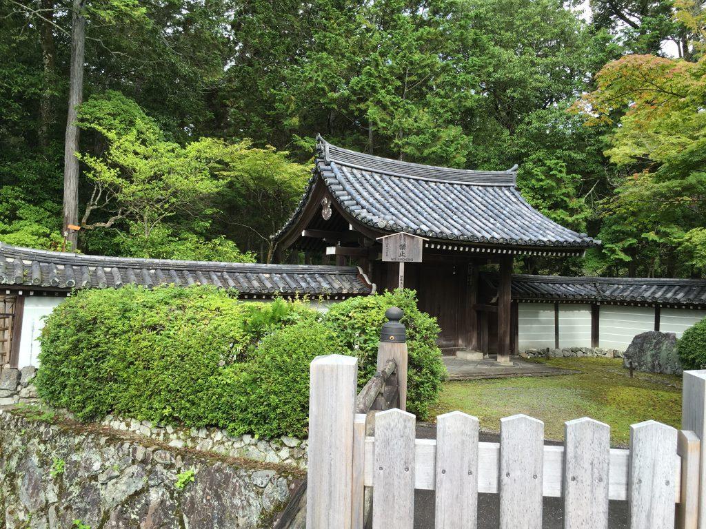 苔寺のあたりを散歩する。