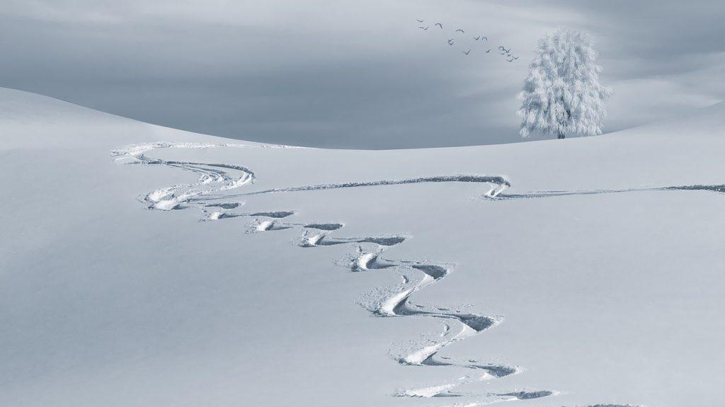 北陸ではまた雪が降るようだ。