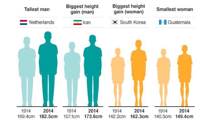 過去100年間で人類は背がかなり伸びた。